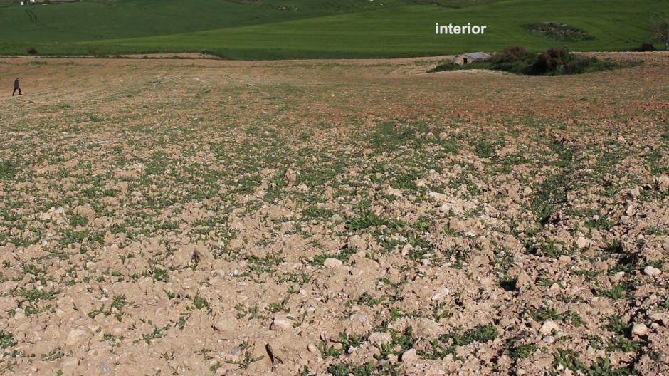 Inner_landscape_JoseOtero